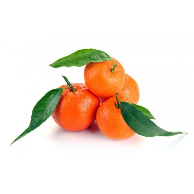 """Clementine """"Yosemite"""" di..."""