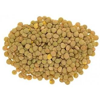 Lenticchie Chiare (1 Kg)